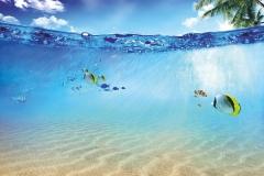 """Фотошпалери """"Морські риби"""" (#110005)"""