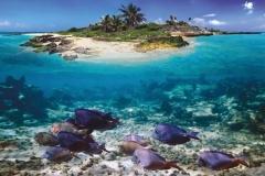 """Фотошпалери """"Острів"""" (#110006)"""