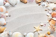 "Фотошпалери ""Ракушки на піску"" (#110021)"