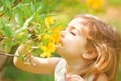 """Фотошпалери """"Дівчинка і гілка квітів"""" (#160064)"""