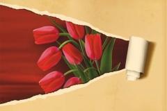 "Фотошпалери ""Тюльпани"" (#160069)"