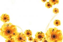 """Фотошпалери """"Жовті квіти"""" (#160071)"""