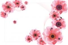 """Фотошпалери """"Квіти шипшини"""" (#160074)"""
