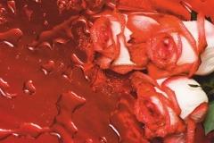 "Фотошпалери ""Троянди"" (#160086)"