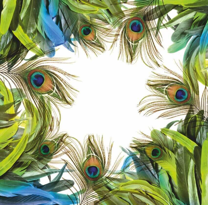 Пір'я павліна, Фотошпалери з пір'ям павліна, латексний друк, Перья павлина, Latexdruk, екологічний друк, екологічно чистий друк, широкоформатний друк, Україна, Чернівці, латекс-друк, купити, замовити, фотошпалери, фотообої, шпалери, обої, оформлення приміщень, дизайн приміщень, оформлення інтер'єру, друк на фотошпалерах, друк на шпалерах, дизайнерські шпалери, друк на холсті, картина у кімнату, модульні картини, картини з частин, картини на підрамнику, латексная печать, экологическая печать, экологически чистая печать, широкоформатная печать, Украина, Черновцы, латекс-печать, купить, заказать, фотообои, обои, оформление помещений, дизайн помещений, оформление интерьера, печать на фотообоях, печать на обоях, дизайнерские обои, печать на ткани, картина на ткани, печать на холсте, картина в комнату, модульные картины, картины из частей, картины на подрамнике
