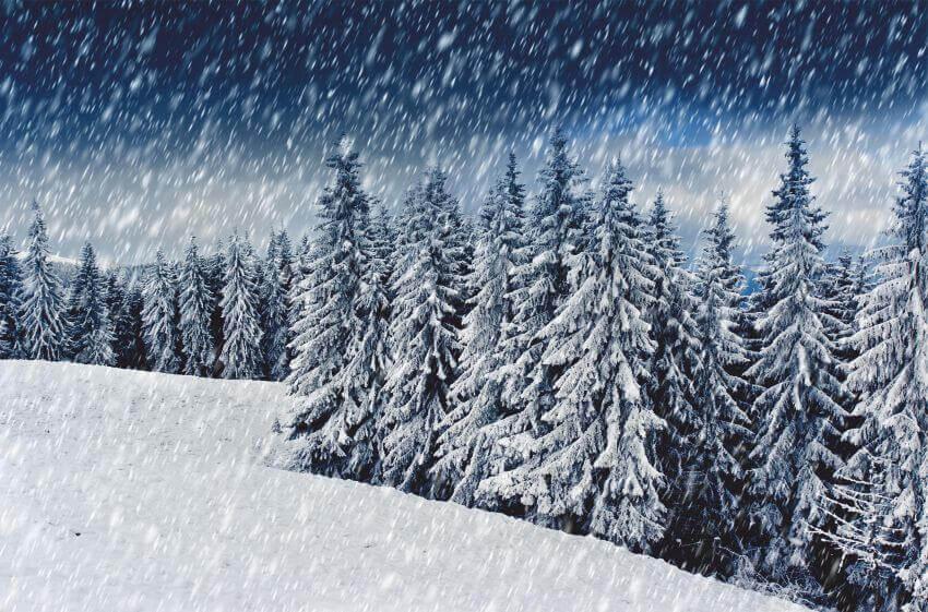 Фотошпалери зі снігопадом, Фотошпалери із засніженими ялинками, Снегопад, фотообои со снегопалом, Latexdruk, екологічно чистий друк, широкоформатний друк Чернівці, латекс-друк, замовити фотошпалери, фотошпалери, обої, дизайн приміщень, оформлення інтер'єру, друк на шпалерах, друк на тканині, друк на холсті, картина у кімнату, модульні картини, латексная печать, экологически чистая печать, широкоформатная печать Черновцы, заказать фотообои, обои, дизайн помещений, оформление интерьера, печать на обоях, печать на ткани, картина на ткани, печать на холсте, картина в комнату, модульные картины