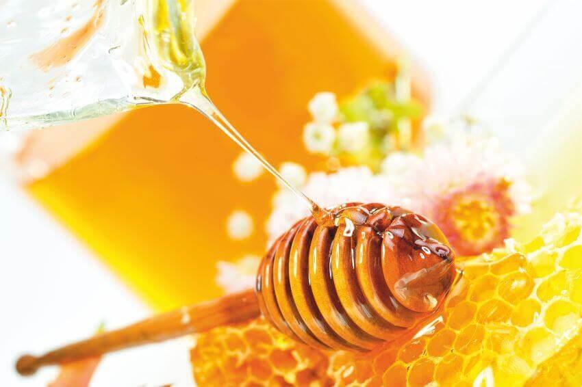 фотошпалери мед, фотообои мед, фотошпалери соти, фотообои соты, картина мед и соты, картина мед і соти, латексний друк, Latexdruk, екологічний друк, широкоформатний друк Україна, купити фотошпалери, фотообої, шпалери, обої, оформлення приміщень, друк на фотошпалерах, дизайнерські шпалери, картини з частин, картини на підрамнику, латексная печать, экологическая печать, широкоформатная печать Украина, латекс-друк, купить фотообои, фотообои, оформление помещений, печать на фотообоях, дизайнерские обои, картины из частей, картины на подрамнике, фотошпалери в кімнату, фотошпалери Чернівці, фотошпалери в Чернівцях, фотообои в Черновцах, фотошпалери в кухню, фотообои в комнату, фотообои в кухню