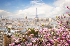 "Фотошпалери ""Париж"" (#30152)"