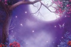 """Фотошпалери """"Чарівний ліс"""" (#40054)"""