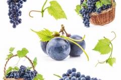 "Фотошпалери ""Чорний виноград"" (#600104)"
