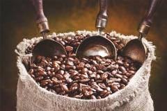"""Фотошпалери """"Мішок кави"""" (#60069)"""